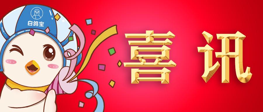 """喜讯!白鸽在线荣获2019年度厦门""""新金融""""金融服务创新奖!"""